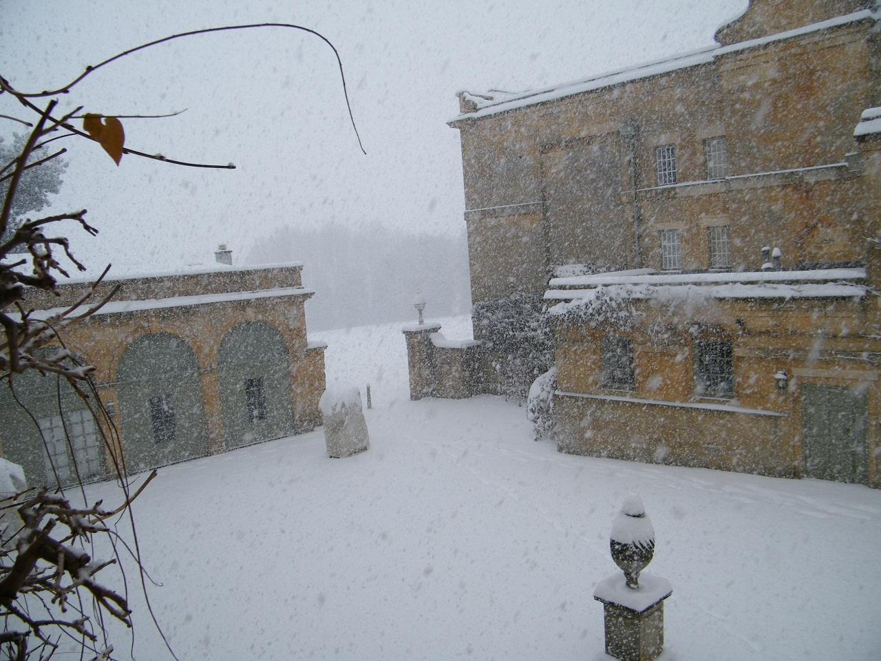 Dec snow 10 001_sw
