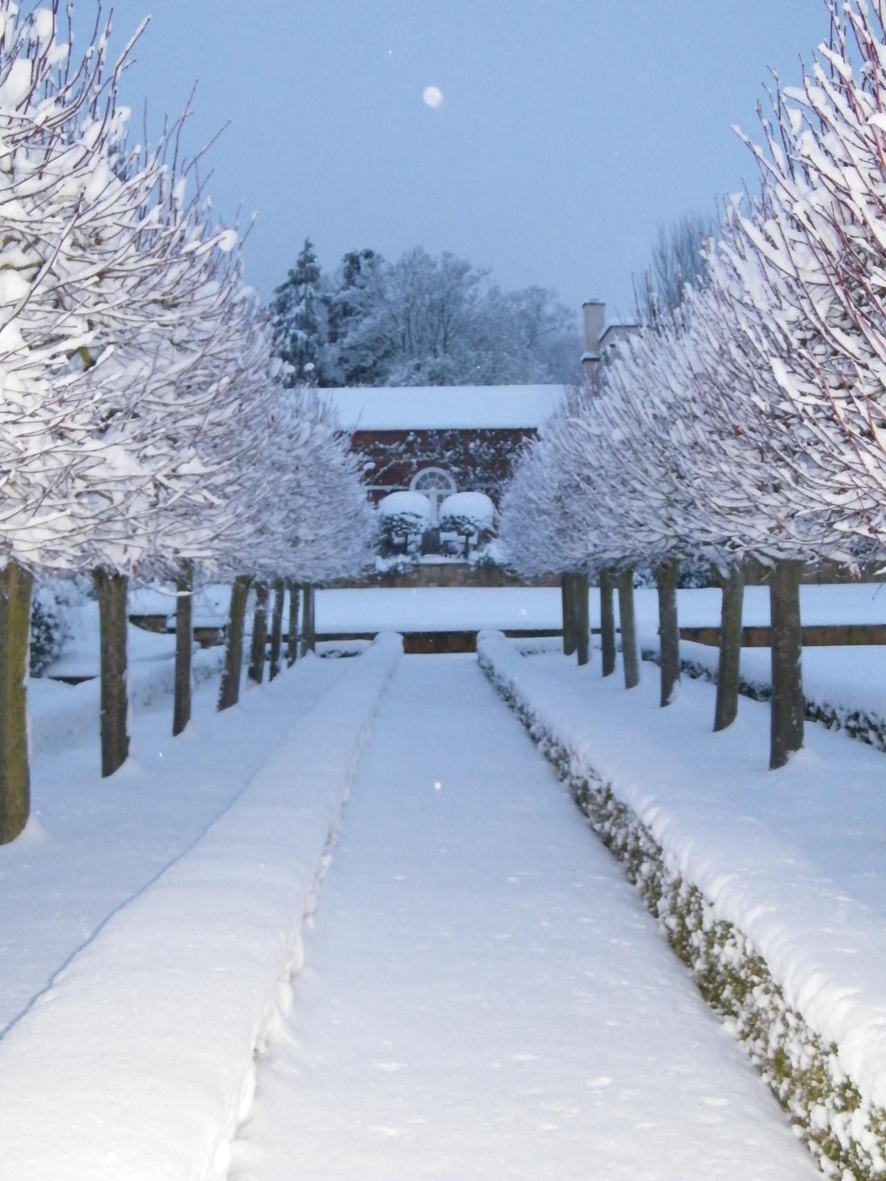 Snow 2010 114_sw