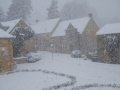 Dec snow 10 008_sw